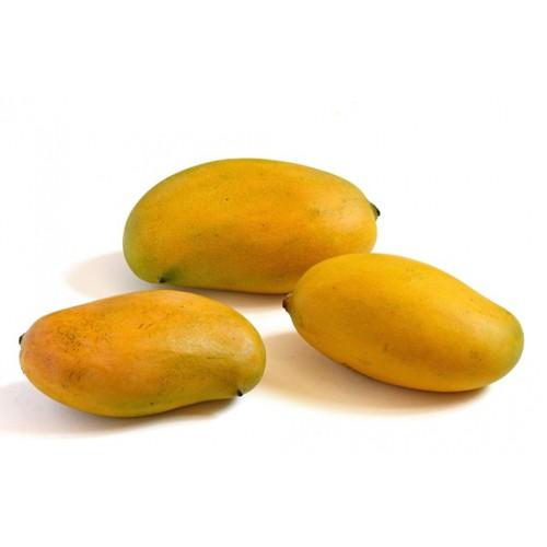 Mallika - Mango fruit