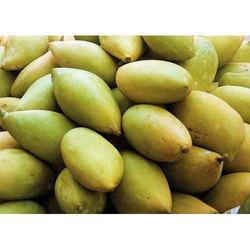 Thottapuri- Mango Fruit