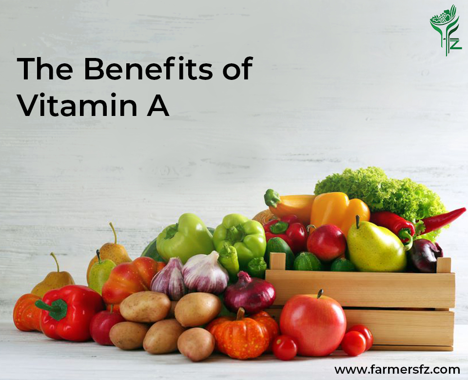 The Benefits of Vitamin A